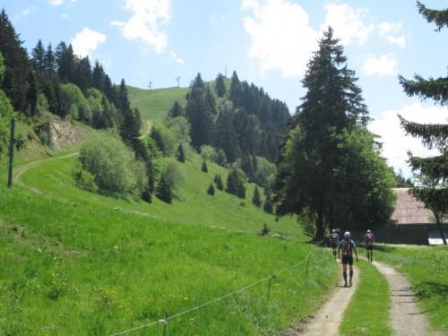 Trail Massif des Brasses - direction-pointe-des-brasses