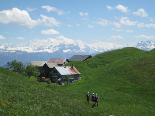 Trail du Massif des Brasses - La Joux